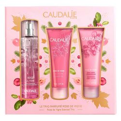 Набор Rose de Vigne Caudalie Rose de Vigne Set (gel/50ml + cream/50ml + t/water/50ml) фото